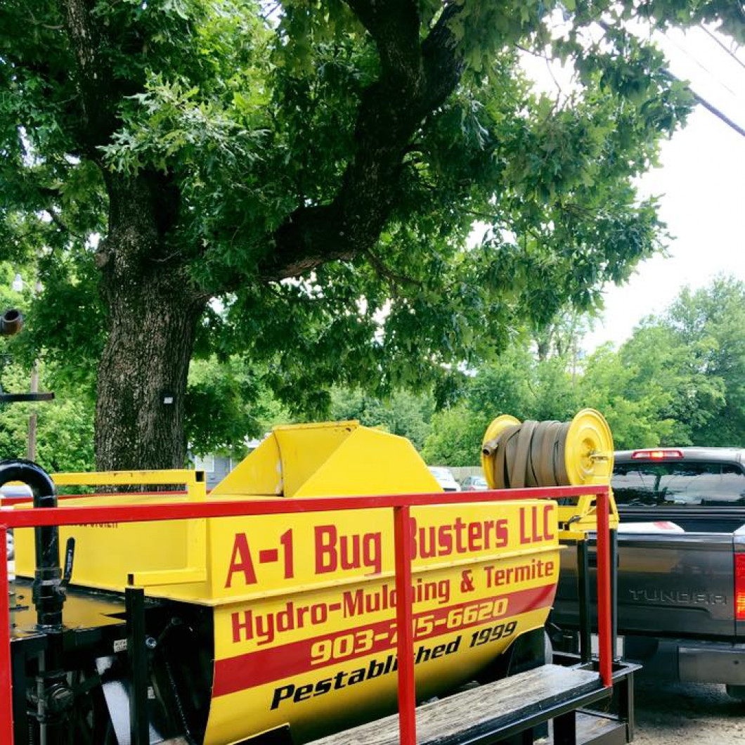 pest control greenville tx